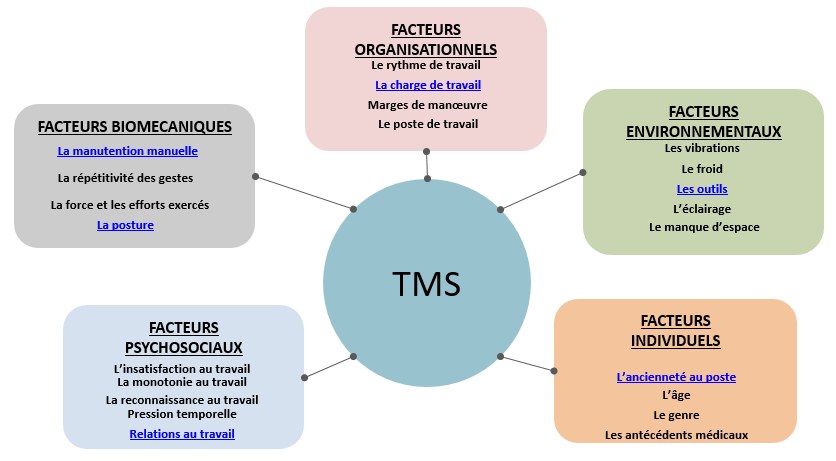 TMS - Ergonomie Conseil